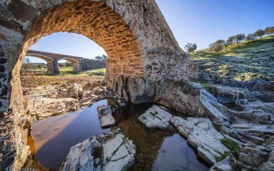 Upgraded bridges